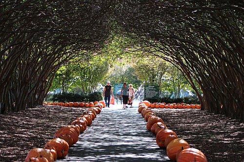 Arboretum in Dallas, Texas